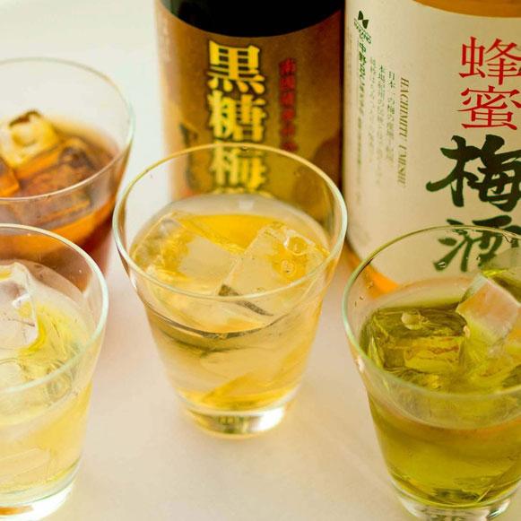 梅酒 500円~(税抜)